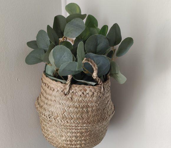 Eucaliptus… pour une ambiance nature et chaleureuse