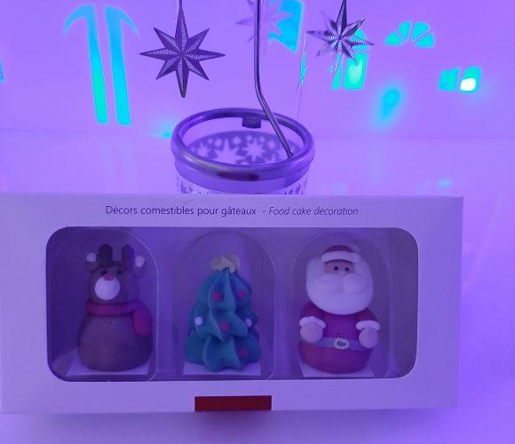 J'ai testé pour vous 3 sujets sucre 3D Noël tradition