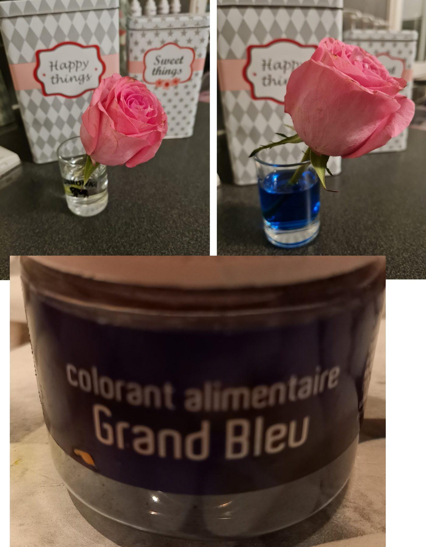 Ajouter de la couleur à votre eau de fleurs coupées : Astuce