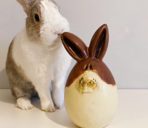 Mon moulage lapin en chocolat !