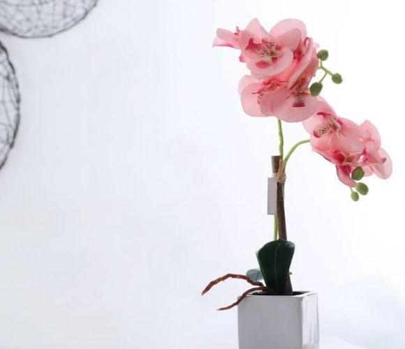Une déco sur mesure avec les orchidée artificielles