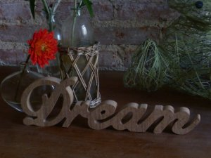 Mot à poser :»dream»