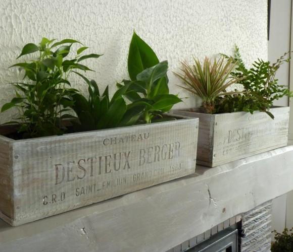 Jardinières d'intérieur