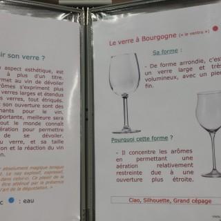 Comment choisir mon verre à vin ?
